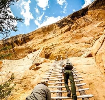 Area Maps | Mesa Verde National Park CO | VisitMesaVerde.com